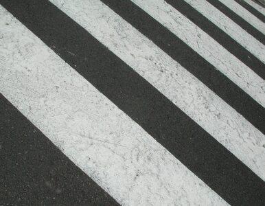 Kontrowersyjny pomysł PO: więcej praw dla pieszych