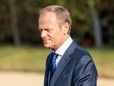 """Tusk wróci na wybory parlamentarne? """"Wie, gdzie jest realna władza"""""""