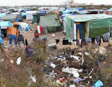"""Los """"dżungli"""" przypieczętowany. Sąd: Część obozu w Calais do likwidacji"""