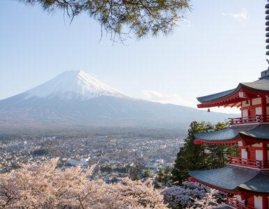 Tokio – odkryj największą metropolię na świecie!