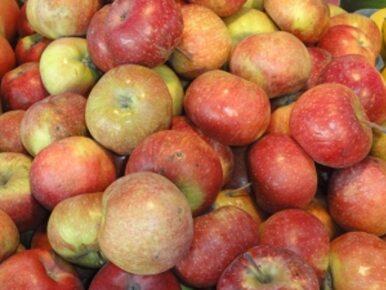 Akcja #jedzjabłka robi międzynarodową karierę