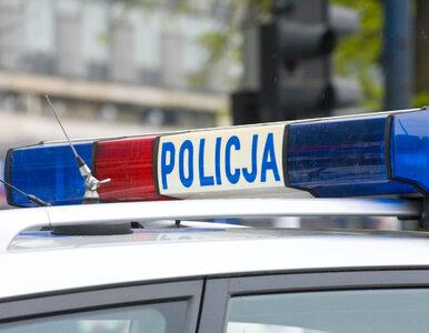 Strzelanina w Warszawie. Policjantka ranna w głowę