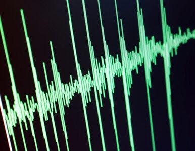 6,2 st. w skali Richtera: trzęsienie ziemi w Japonii