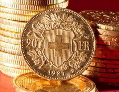 Pensja dla każdego obywatela? W Szwajcarii będzie głosowanie nad projektem