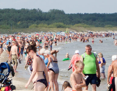 Polski Bon Turystyczny. Tego dnia padł rekord